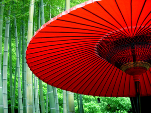 Umbrella with bamboo